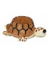 Schildpad thema eierdop 10 cm