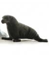 Zeeleeuw knuffels 36 cm
