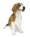 Speelgoed knuffel hond Beagle 56 cm