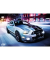 Poster Ford Shelby 61 x 91,5 cm