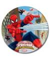 Spiderman bordjes van karton 23 cm