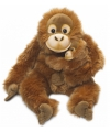 Orang Utan knuffel van het WNF 25 cm